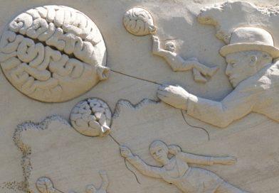 Ne négligeons pas l'intelligence naturelle